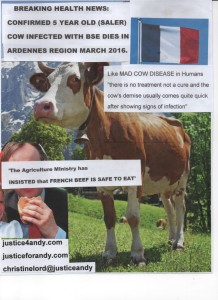 poster french beef bse cow march 2016